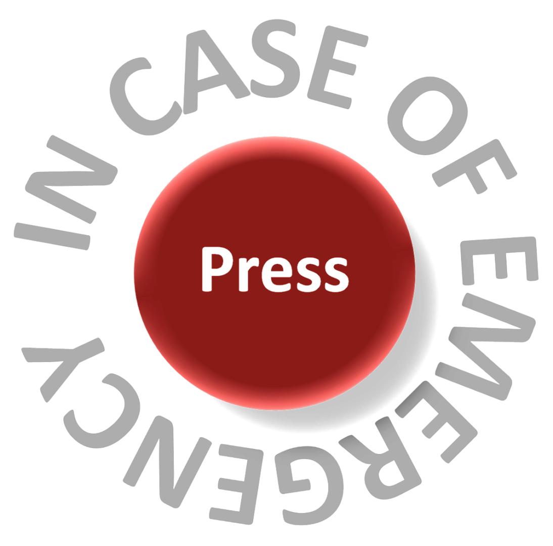 In Case of Emergency Press logo